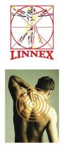 Linnex logo